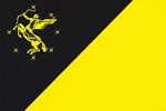 Официальный флаг флаг Химки